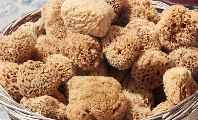 7 Surprising Ways You'll Benefit from Using Natural Sponges